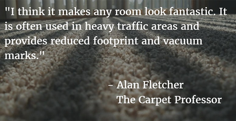 frieze carpet reviews