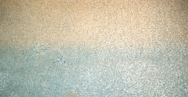 Elevations Stone Beige Carpet : Fade resistant carpet home the honoroak