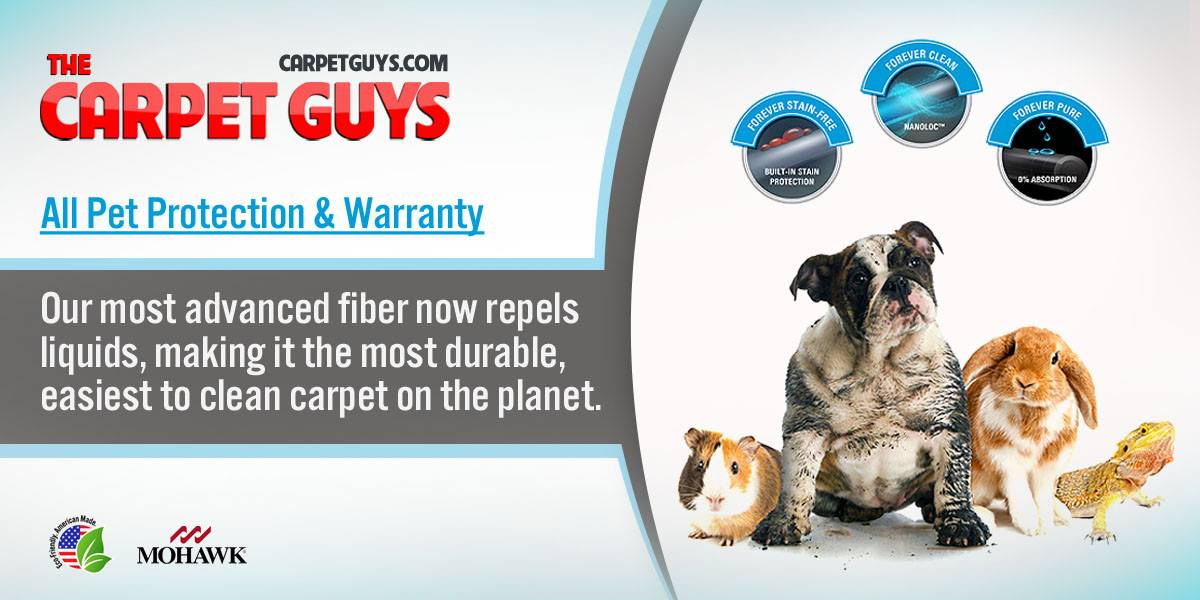 do carpets have warranties
