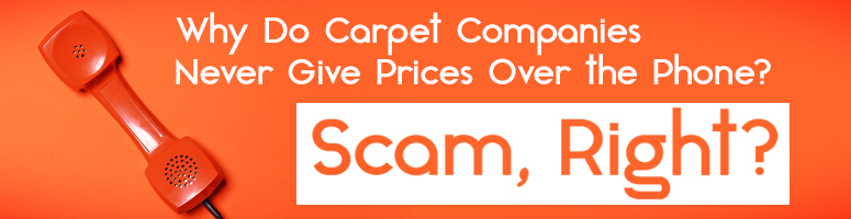The Carpet Guys Learn All You Need To Know About