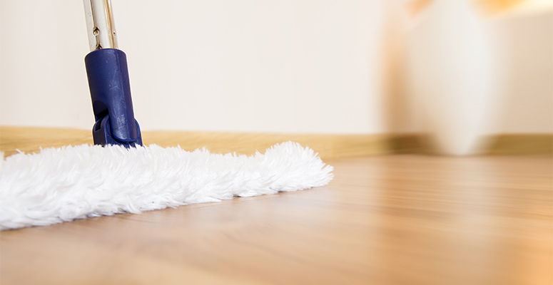 hardwood cleaning mop