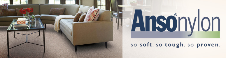 shaw anso nylon carpet review