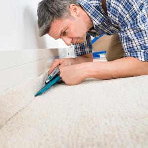 bcf polyester carpet