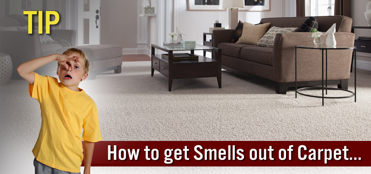 how to get smell out of carpet