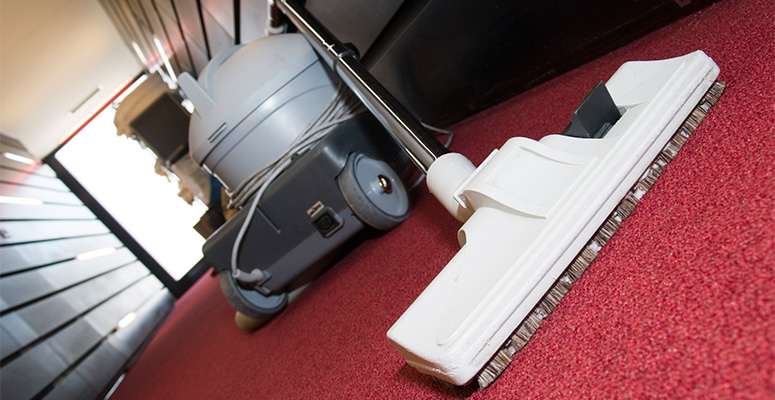how to get the pee smell out of carpet