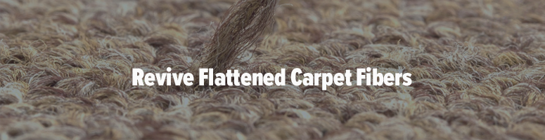 how to prevent carpet dents