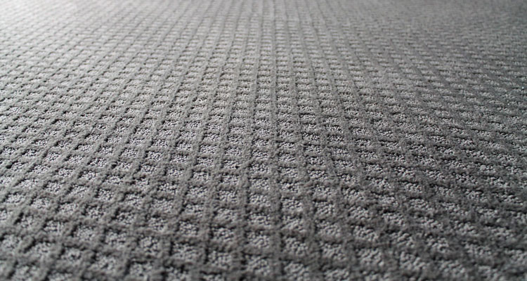 patterned gray carpet