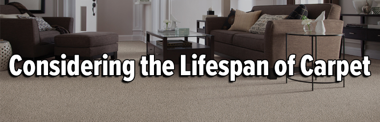 lifespan carpet banner