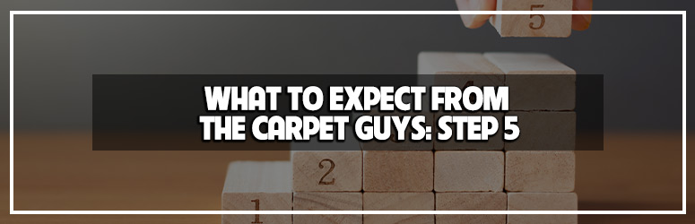 step 5 what to expect from the carpet guys blog banner