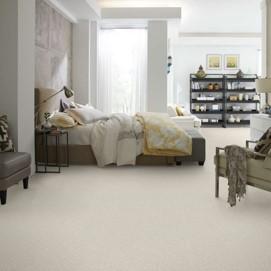 shaw platinum texture tonal in denali carpet