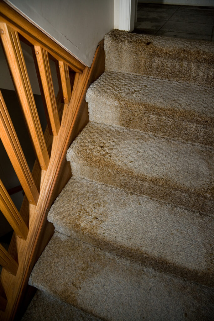 carpet wear and tear on stairs