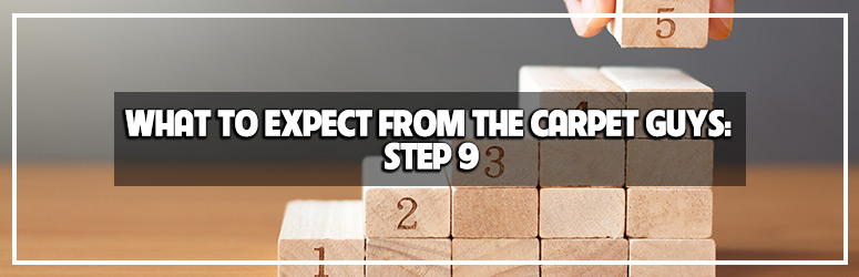 what to expect from the carpet guys step 9 the clean up blog banner