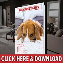Carpet Buying Guide - Free Download
