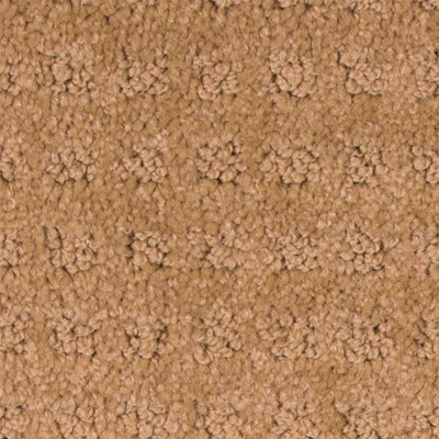 Blockbuster Low Pile Plush Carpet Price The Carpet Guys