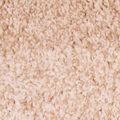 Extraordinary Plush Carpet Price | The Carpet Guys