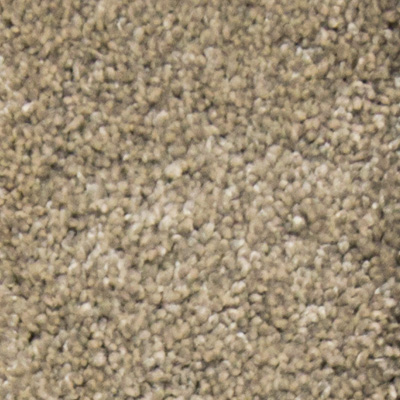 Heavenly Plush Carpet Price The Carpet Guys
