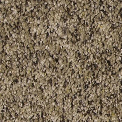Dreamweaver Puresoft Carpet Reviews Carpet Vidalondon