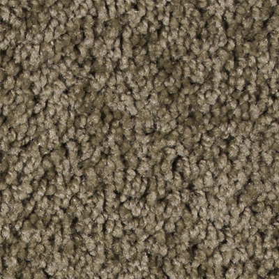 Luxuriant Plush Carpet Price The Carpet Guys
