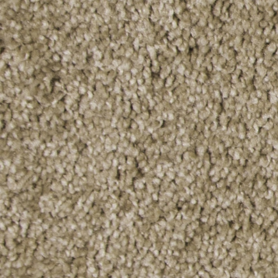Luxuriant Plush Carpet Price The Carpet Guys