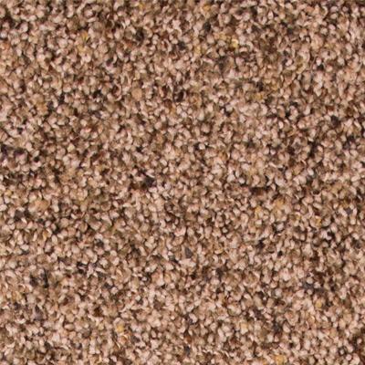 Phenomenal Plush Carpet Price The Carpet Guys