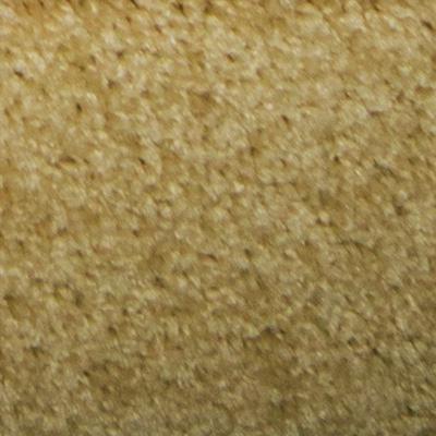 SP420 Cookie Dough