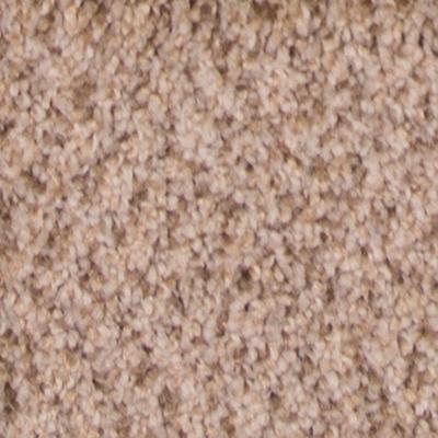 Sensational Plush Carpet Price The Carpet Guys