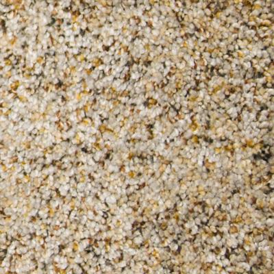 Symphony Plush Carpet Price | The Carpet Guys
