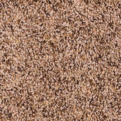 Twilight Plush Carpet Price The Carpet Guys