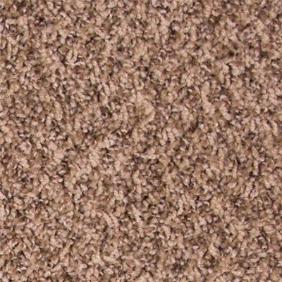 Untouchable Low Pile Plush Carpet Price The Carpet Guys