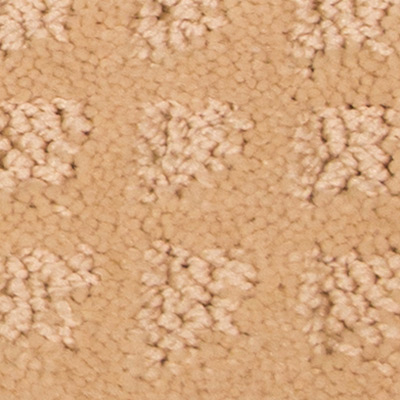 Garden Villa Low Pile Plush Carpet Price The Carpet Guys
