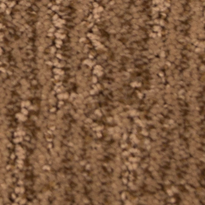 Sculptured Touch Low Pile Plush Carpet Price The Carpet Guys