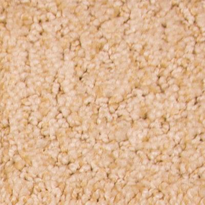 Zen Garden Low Pile Plush Carpet Price The Carpet Guys
