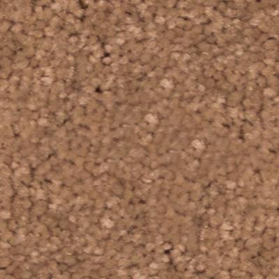 Newbern Classic 12 Plush Carpet Price The Carpet Guys