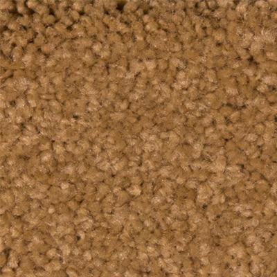 Sandy Hollow Classic I 12 Plush Carpet Price The Carpet