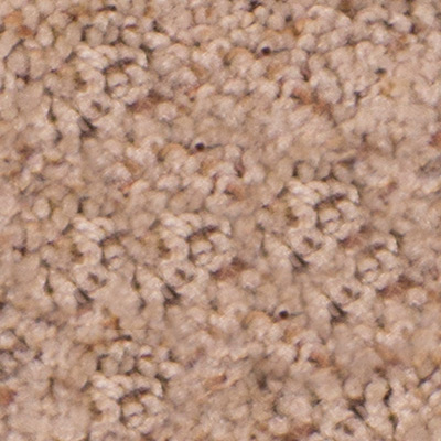 What S Up Plush Carpet Price The Carpet Guys